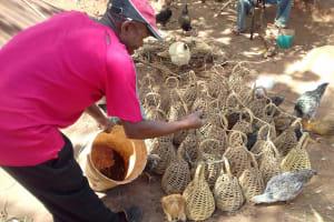 The Water Project: Igogwa Community -  Man Feeds His Birds