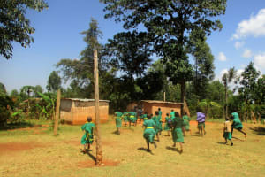 The Water Project: Mukhombe Primary School -  Rush To Use Latrines On Break