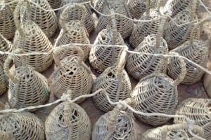 The Water Project: Igogwa Community -  Quail Nests