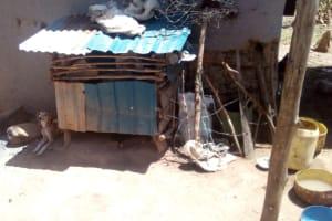 The Water Project: Handidi Community, Malezi Spring -  Dog Kennel