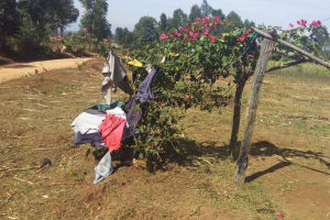 The Water Project: Futsi Fuvili Community, Futsi Fuvili Spring -  Clothesline