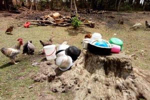 The Water Project: Bukhakunga Community, Indiatsi Omukitsa Spring -  Untensils Left On The Ground