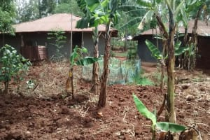 The Water Project: Esibuye Primary School -  Michels Home