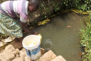 The Water Project: Ebung'ayo Community, Wycliffe Spring -  Fetching Water