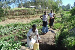 The Water Project: Shiamboko Community, Oluchinji Spring -  Mrs Oluchinji Fetching Water At The Spring