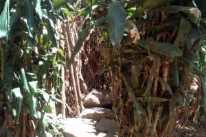 The Water Project: Handidi Community, Kadasia Spring -  Live Bathing Room