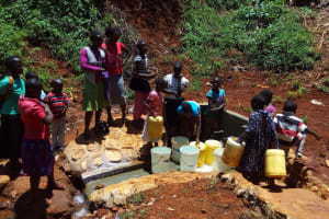 The Water Project: Shitaho Community, Mwikholo Spring -  Protected Spring
