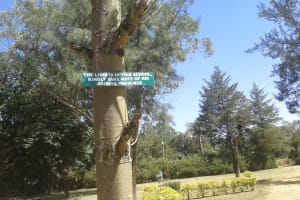 The Water Project: Bishop Sulumeti Girls Secondary School -  School Sign