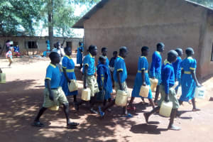 The Water Project: Ematsuli Primary School -  Students Carrying Water