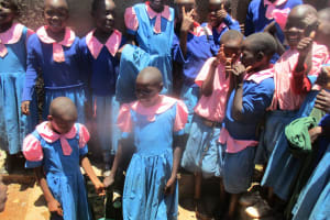 The Water Project: Virembe Primary School -  Finished Tank