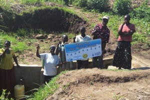 The Water Project: Emarembwa Community, Nyangweso Spring -  Protected Spring