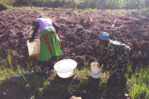 The Water Project: Shikoti Community, Amboka Spring -  Fetching Water