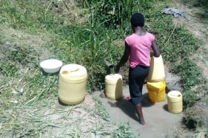 The Water Project: Handidi Community, Malezi Spring -  Lady Fetching Water