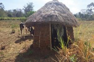 The Water Project: Tsivaka Community, Wefwafwa Spring -  Latrine