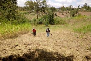 The Water Project: Bukhakunga Community, Indiatsi Omukitsa Spring -  Women Working On The Farm