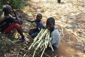 The Water Project: Handidi Community, Kadasia Spring -  Children Enjoying Sugarcane