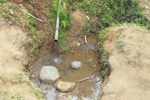 The Water Project: Futsi Fuvili Community, Shikanga Spring -  Shikanga Spring