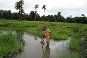 The Water Project: Baya Community -  Swamp Water