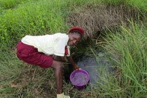 The Water Project: Ernest Bai Koroma Secondary School -  Swamp