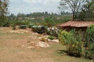 The Water Project: Mukhuyu Community, Shikhanga Spring -  Homestead