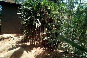 The Water Project: Irenji Community, Shianda Spring -  Bushes Used As Latrine