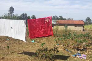 The Water Project: Irenji Community, Shianda Spring -  Clothesline