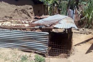The Water Project: Handidi Community, Matunda Spring -  Chicken Coop