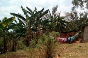 The Water Project: Mukhuyu Community, Shikhanga Spring -  Clothesline