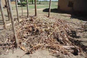 The Water Project: Shikhambi Community, Daniel Inganga Spring -  Garbage Pile