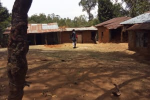 The Water Project: Shikhambi Community, Daniel Inganga Spring -  Homestead Of Mr Inganga