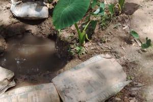 The Water Project: Mungulu Community, Zikhungu Spring -  Zikhungu Spring