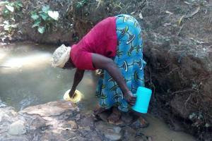 The Water Project: Elunyu Community, Saina Spring -  Elizabeth Fetching Water At Saina Spring