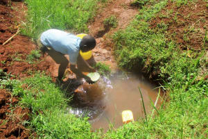 The Water Project:  Scooping Water