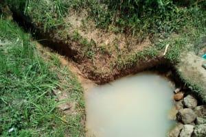 The Water Project: Mukhuyu Community, Shikhanga Spring -  Shikhanga Spring