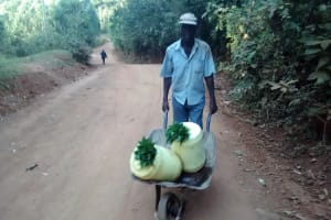 The Water Project: Wamuhila Community, Isabwa Spring -  Man Carries Water With Leaf Lids