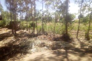 The Water Project: Lutonyi Community, Shihachi Spring -  Community Landscape