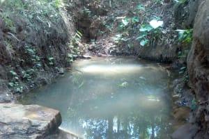 The Water Project: Elunyu Community, Saina Spring -  Saina Spring