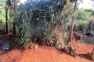 The Water Project: Wamuhila Community, Isabwa Spring -  Bathing Shelter