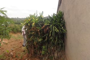 The Water Project: Mwiyala Community, Benard Spring -  Bathing Shelter