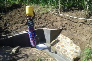The Water Project: Eshiakhulo Community, Omar Sakwa Spring -  Clean Water