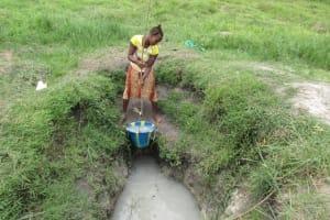 The Water Project: Rosint Community, 16 Gilbert Street -  Swamp