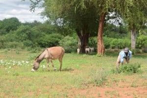 The Water Project: Ikulya Community -  Household