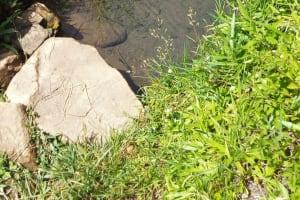The Water Project: Bushevo Community, David Enani Spring -  David Enani Spring