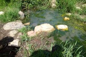 The Water Project: Chegulo Community, Shakava Spring -  Shakava Spring