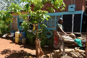 The Water Project: Kaani Community E -  Dish Rack