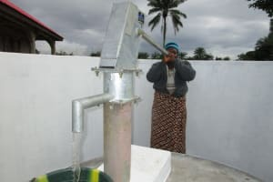 The Water Project: Royema, New Kambees -  Successful Installation
