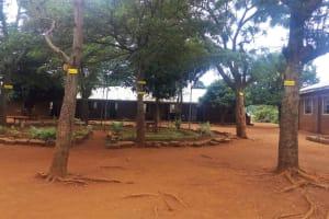 The Water Project: Mwiyenga Primary School -  School Grounds