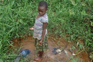 The Water Project: Ebuhando Community, Christopher Omasaba Spring -  Omasaba Spring