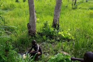 The Water Project: Ejinga-Ayikoru Community -  Unprotected Spring