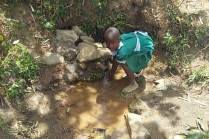 The Water Project: Futsi Fuvili Community, Patrick Munyalo Spring -  Fetching Water